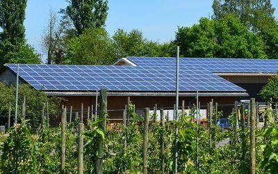 Energiewende-Barometer: Brandenburgs Unternehmer bleiben umweltbewusst