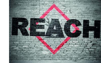 EU-Chemikalienrecht: REACH-Verordnung